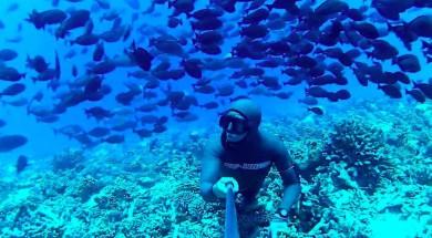 'Фридайвинг на Мальдивах.  Лучшие дайв-сайты